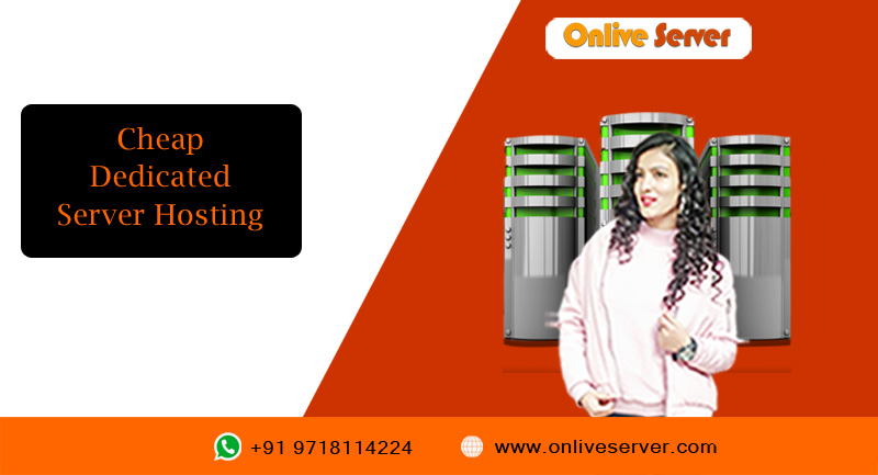 The Assistance of Cheap Dedicated Server Hosting